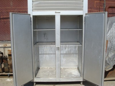 Traulzen Industrial Freezer